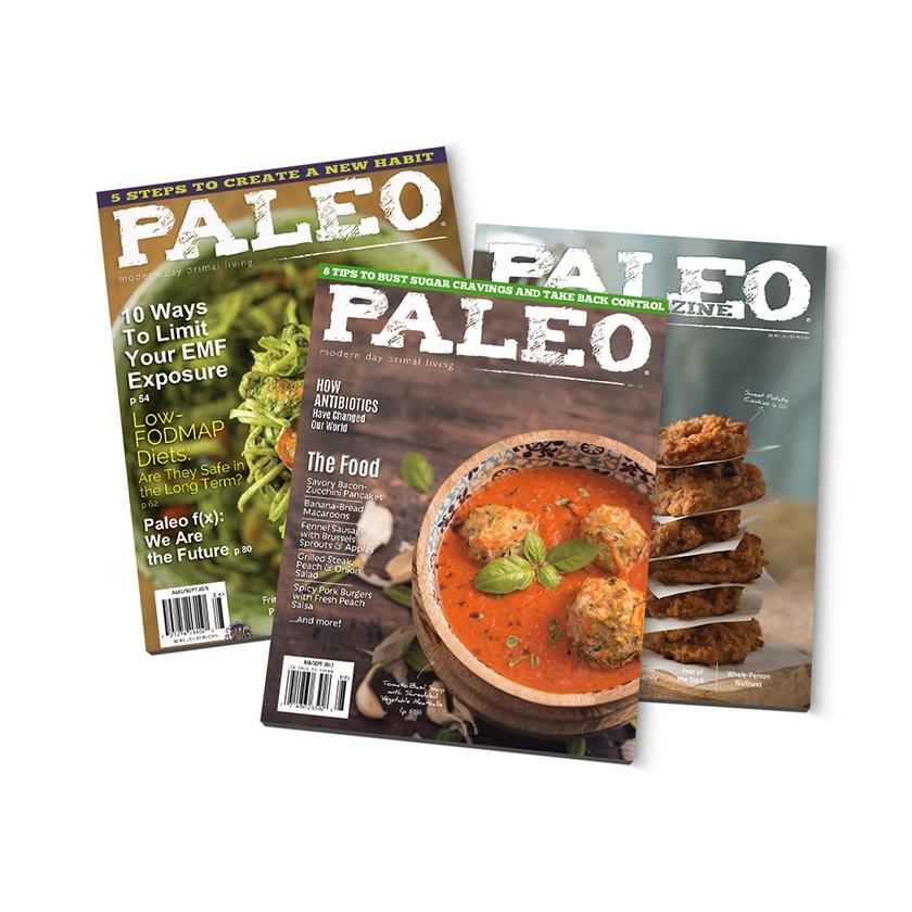 Paleo Magazine design