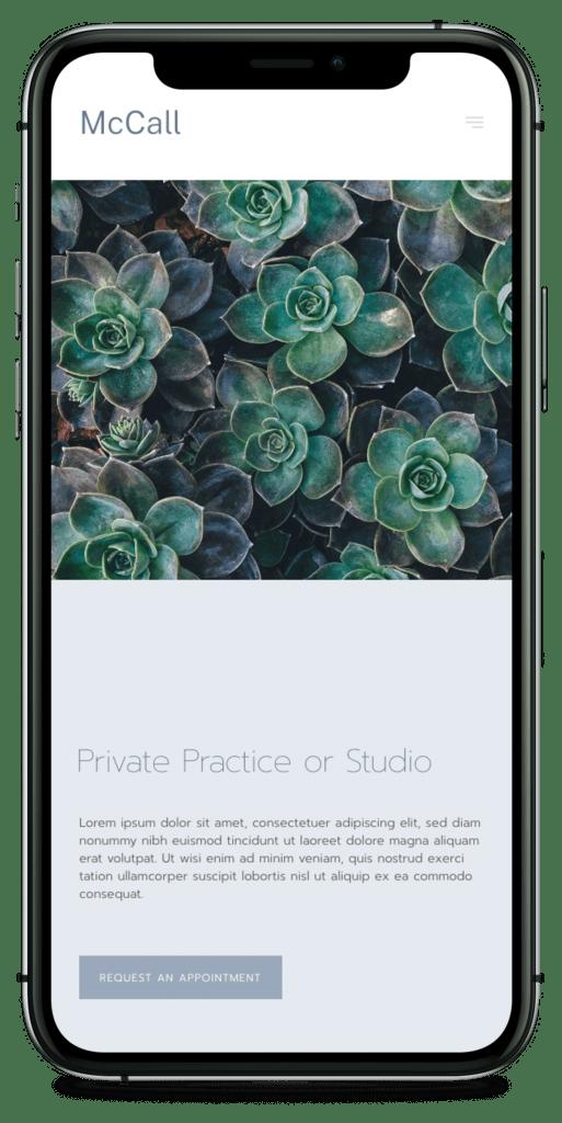 Website-design_iPhone